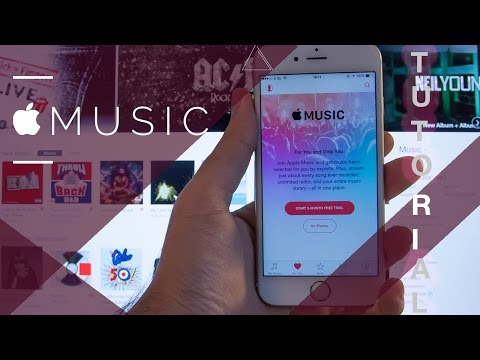 How to setup apple music